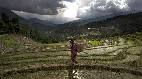 Nepal se prepara para celebrar el Asar Pandra