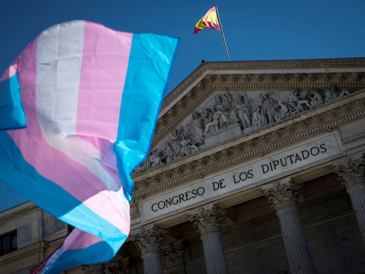 Foto: Una bandera trans ondea frente al Congreso de los Diputados durante una concehtración. (EFE)