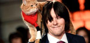 Post de El gato Bob: el fenómeno que convirtió a un vagabundo inglés en millonario