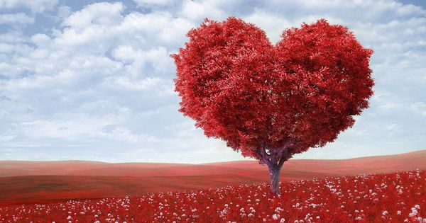 Relaciones De Pareja Frases De Amor Bonitas Y Originales Para