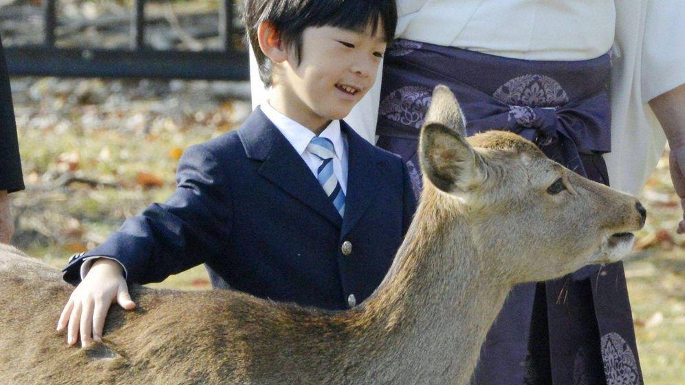 Foto: El principe Hisahito durante su visita al mausoleo de emperador Jimmu en Kashihara. (Cordon Press)