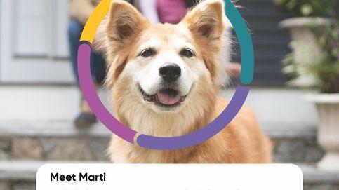 La 'startup' que puede alargar la vida de tu perro hasta tres años más ya vale 700 M