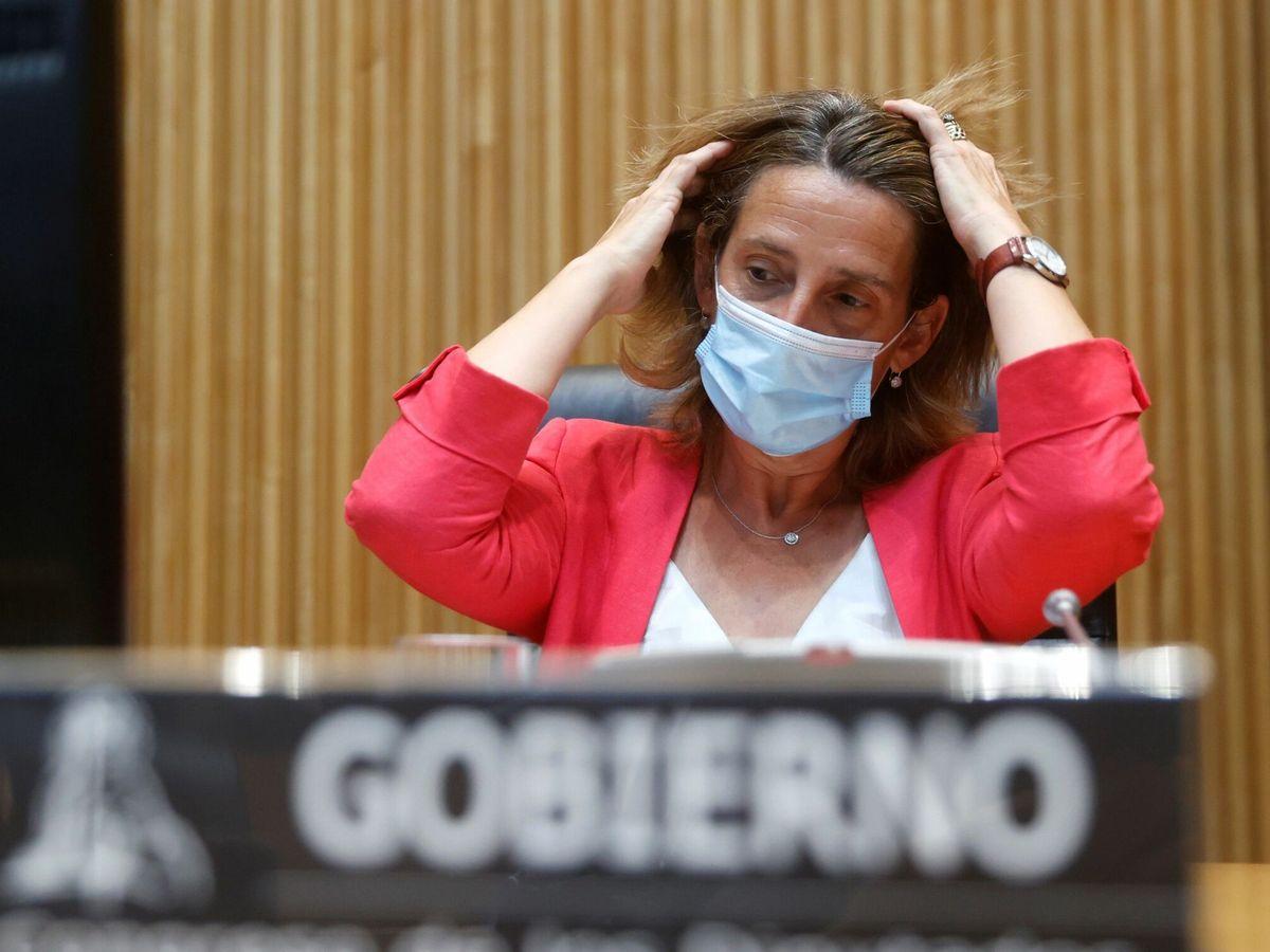 Foto: La ministra de Transición Ecológica, Teresa Ribera. (EFE)