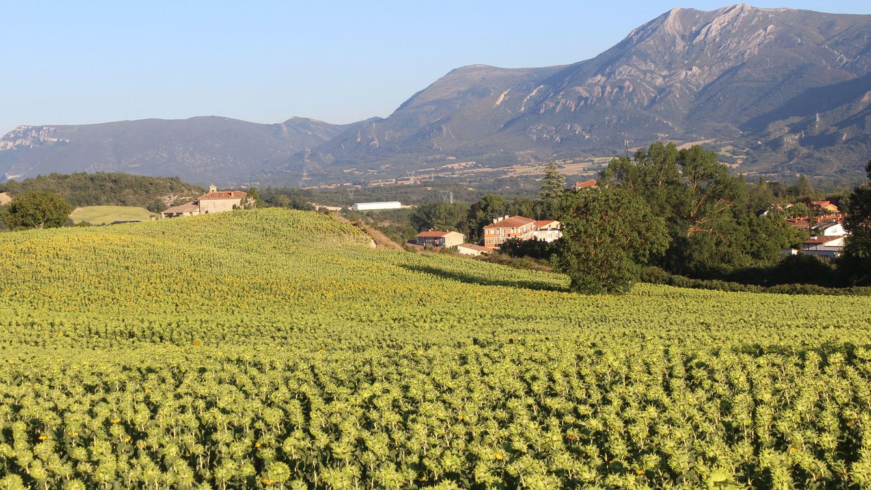 Foto: El Valle de Tobalina ofrece abundancia, costumbres y pintoresca belleza