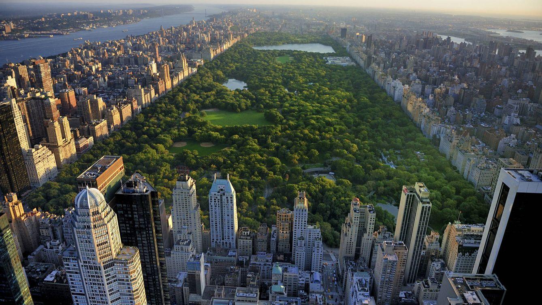 Foto: Vista aérea de Central Park, en Nueva York. (iStock)