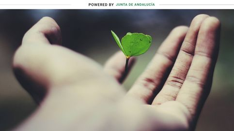 Andalucía abre una línea de financiación de 1,6M para cooperativas y entidades sociales