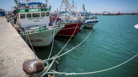 Las oenegés exigen al gobierno un mayor compromiso con la pesca sostenible