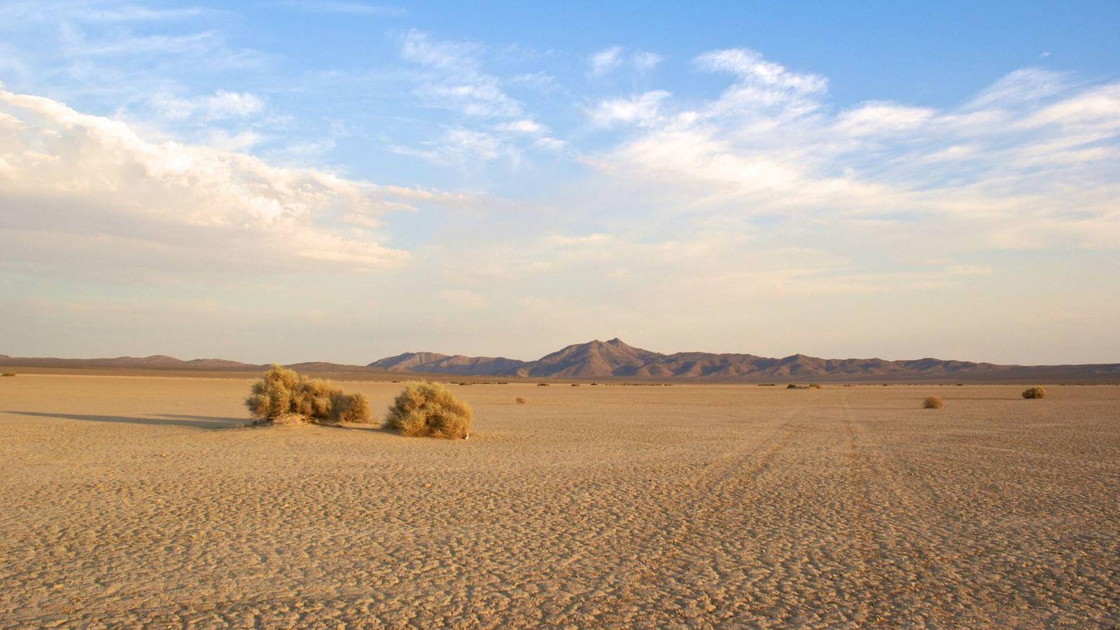 Cambio clim tico el sur de espa a se convertir en un for La cocina del desierto madrid