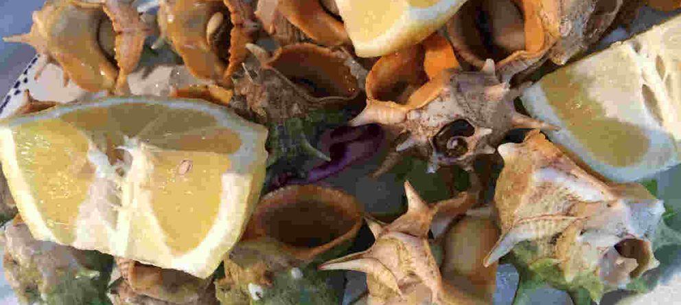 Los Marinos José, el mejor producto del mar en la Costa del Sol