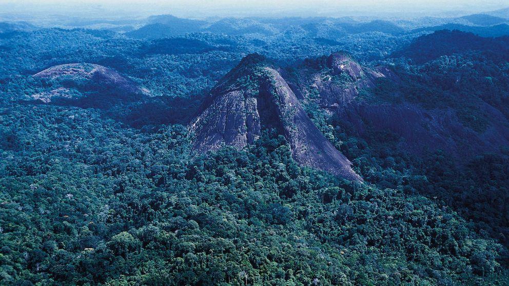 El pulmón del Amazonas comenzará a emitir CO2 en menos de 15 años