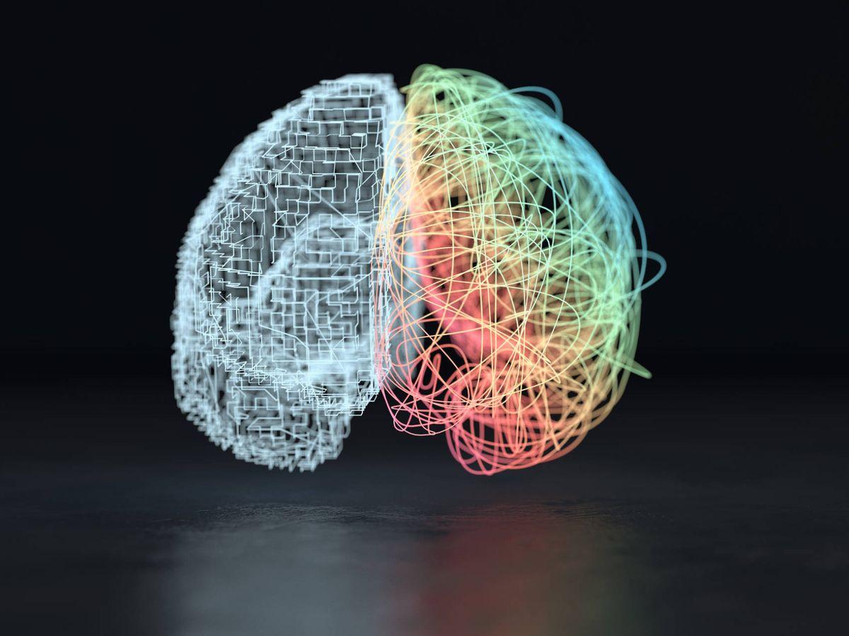 Foto: Representación de los hemisferios del cerebro. (iStock)