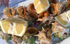 Los Marinos José, el mejor pescado y marisco en Málaga