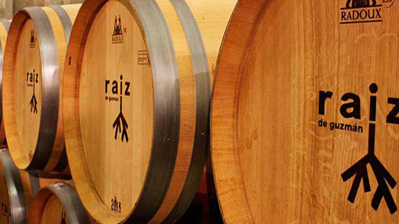 Bodegas Raíz: exclusividad, tradición e innovación en Ribera del Duero