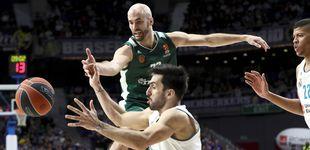 Post de El Panathinaikos, rival del Real Madrid en 'playoffs', abandonará la Euroliga