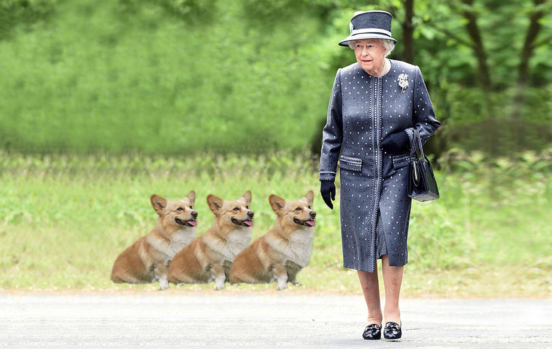 Foto: La reina Isabel y unos corgis en un fotomontaje realizado por 'Vanitatis'