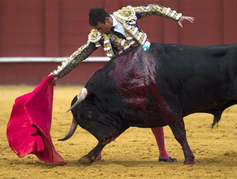 -El diestro Jose María Manzanares durante la faena de su primer toro. (EFE)