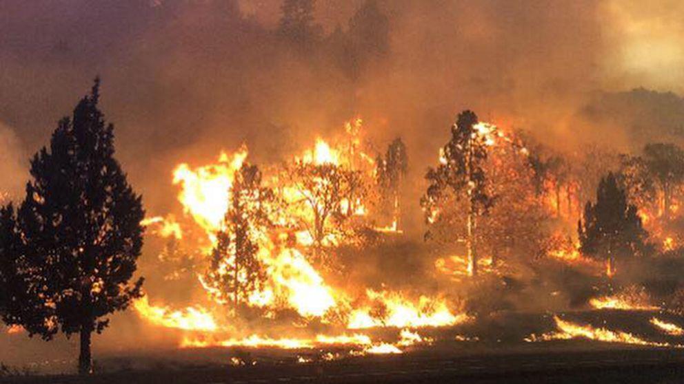 Un muerto y decenas de evacuados en un incendio que ha arrasado unos campos de cultivo en Oregon