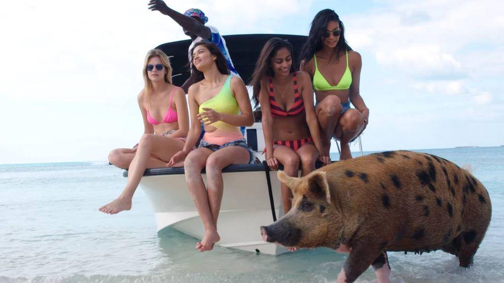 Modelos y musicote en la isla de Escobar: Fyre, la estafa a pijos que acabó en drama