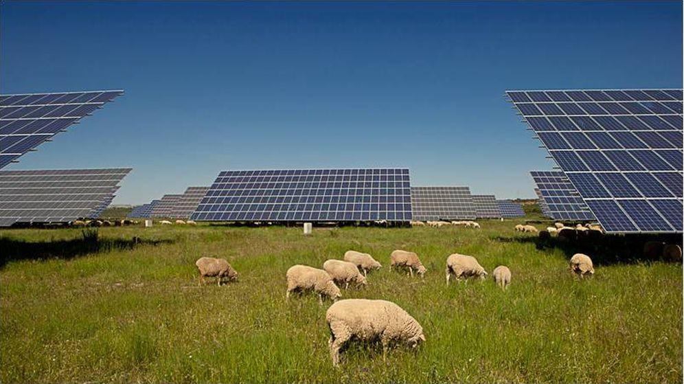 Foto: Planta fotovoltaica de Alten en Alconera. (Badajoz)