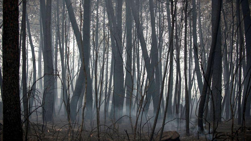 Foto: Paisaje calcinado por el fuego en la zona de Abelenda das Penas. (EFE)