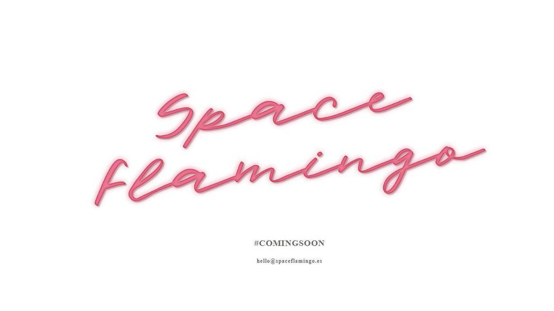 Portada de la web de Space Flamingo. (Web)