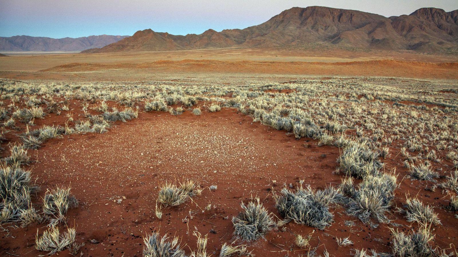 Foto: Desierto en Namibia. (EFE)