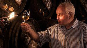 Rioja y Jerez, dos 'catedrales' del vino desde una mirada humana