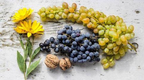 Cómo conocer las distintas uvas y el vino que se elabora con ellas
