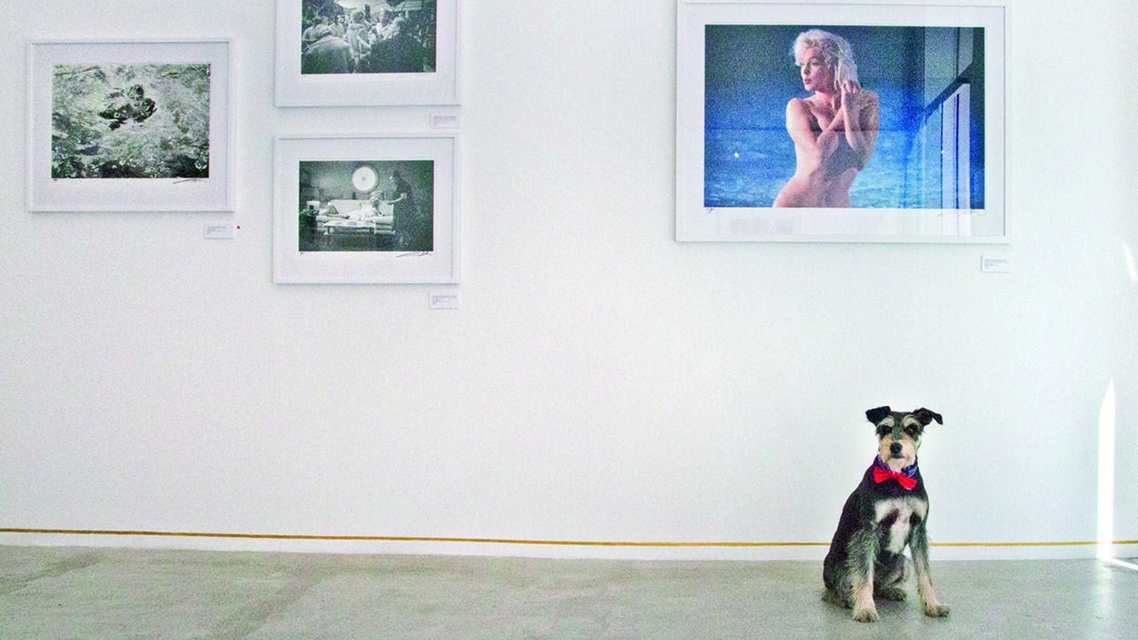 Foto: Colega en Mondo Galería, en Madrid. Foto: Micaela de la Maza