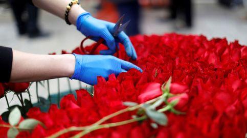 Un niño regala 68 rosas por San Valentín a todas sus compañeras de clase