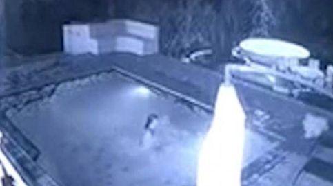 El cocodrilo que ataca a una pareja interrumpiendo su baño nocturno en la piscina de un hotel
