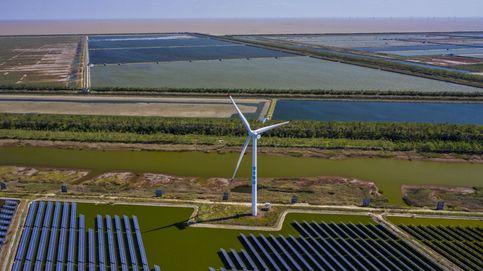 La alemana BayWa compra una cartera de desarrollos renovables en España de 300 MW