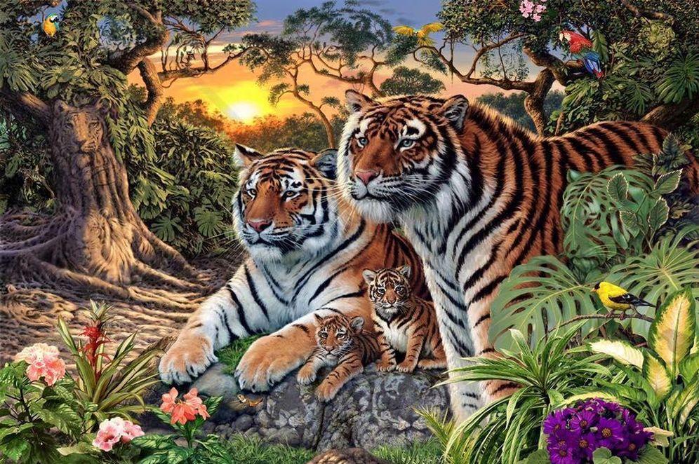 Foto: ¿Cuántos tigres es capaz de identificar escondidos entre el paisaje?