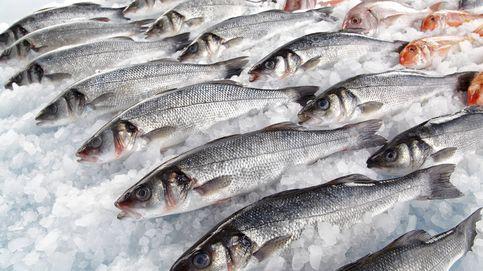 El consumo de pescado ha disminuido un 20% en los últimos años