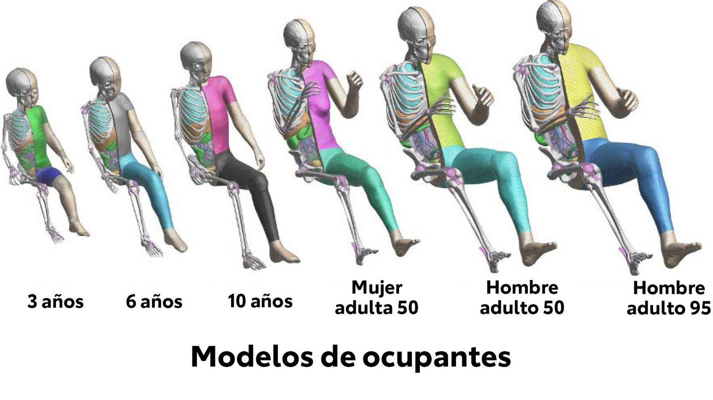 THUMS cuenta con 'dummies' virtuales que representan a niños desde 2016, y adultos de distintas tallas y pesos desde 2011.