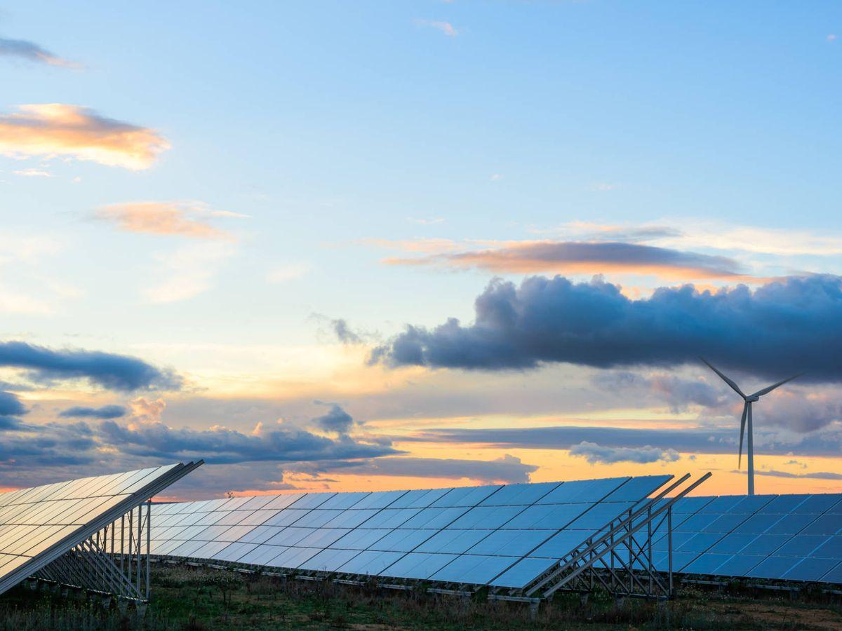 Foto: Planta fotovoltaica. (iStock)