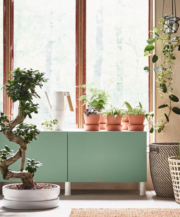 Foto: Ideas decorativas vegetales para espacios más o menos reducidos (Foto: Ikea)