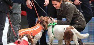 Post de Kate Middleton se baja de los tacones: este es su look más campero
