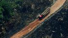 La deforestación en la Amazonía brasileña creció un 222 % en agosto