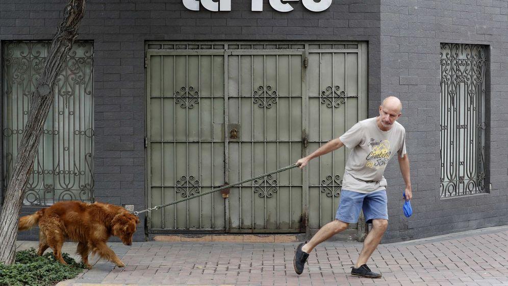 Foto: Nuestros perros pueden dar muestras de ansiedad. Foto:EFE Paolo Aguilar