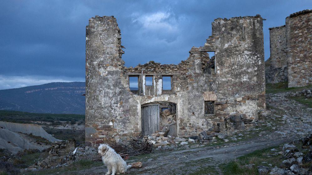 Foto: Un perro se sienta sobre las ruinas de Esco, Aragón. (Reuters/Vincent West)