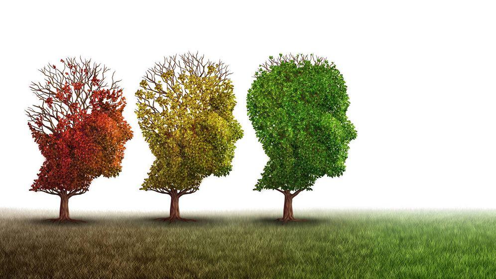 Foto: El Alzheimer, una de las más graves enfermedades del mundo contemporáneo. (iStock)