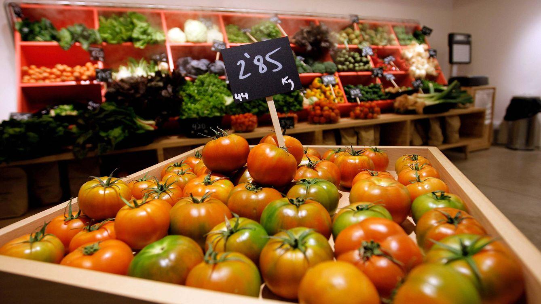 Foto: Tienda de frutas y verduras ecológicas en Valencia. (EFE)