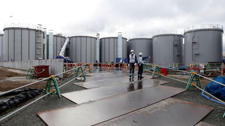 El agua contaminada de Fukushima podría afectar al ADN humano, según Greenpeace
