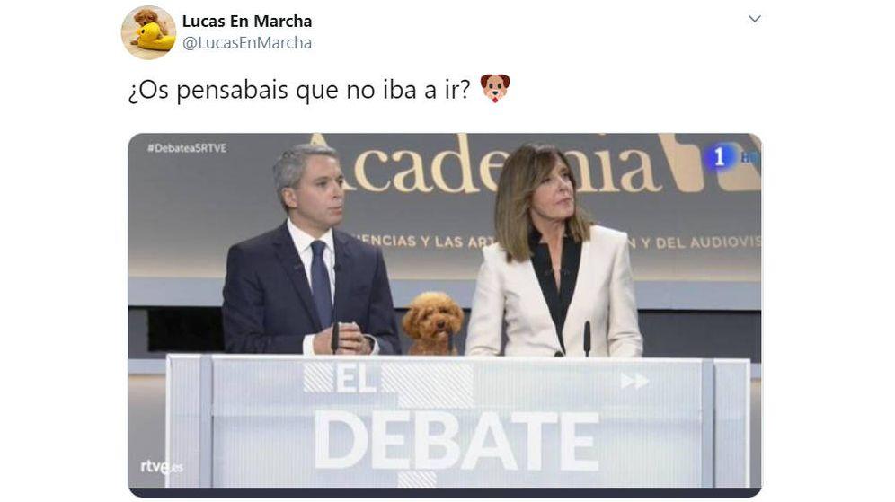 Foto: El montaje original del perro entre los presentadores del debate pertenece a otra cuenta de Twitter (Foto: Twitter)