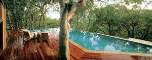 El paraíso se encuentra entre los árboles de Sídney