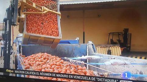 TVE emite íntegro el discurso de Rajoy, pero corta a la oposición por la Tomatina