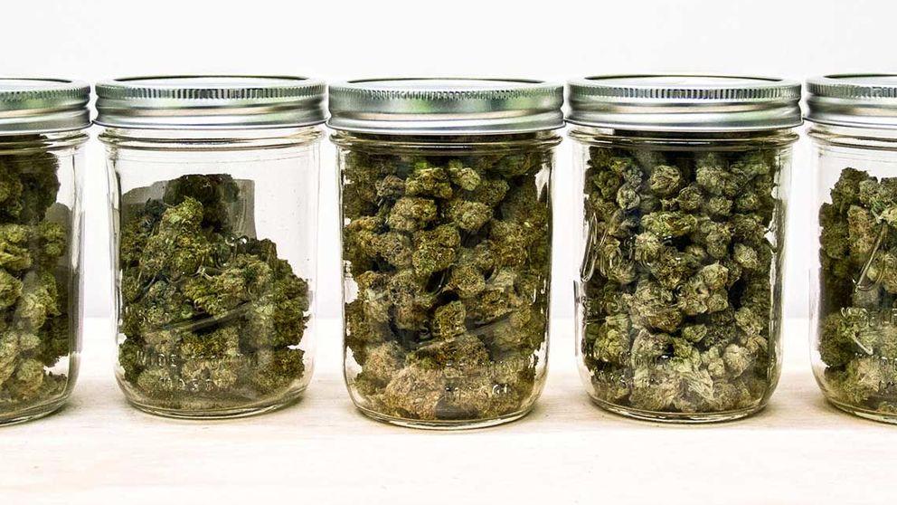 Marihuana a domicilio y otros inventos para amantes del cannabis