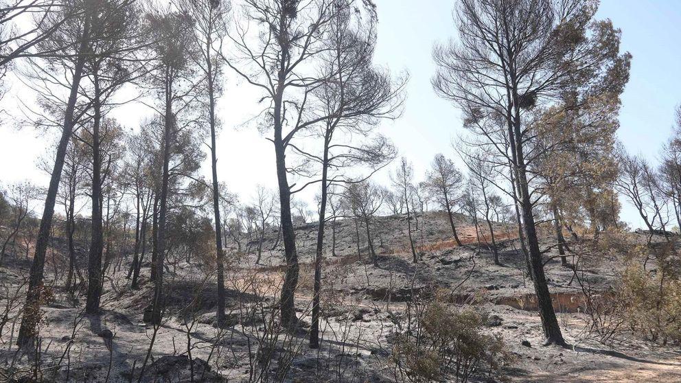 Los bomberos siguen trabajando para extinguir el incendio de Tarragona