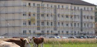 Post de Alemania confina el distrito del rebrote en la planta cárnica tras más de 1.500 positivos